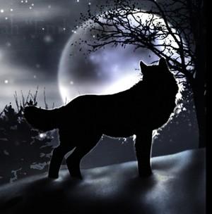 Shadow Wolf Speedpaint by krazykrista on DeviantArt