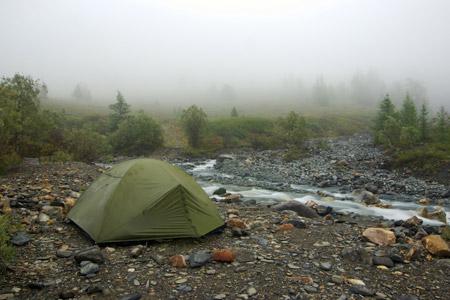 Survival tent in woods