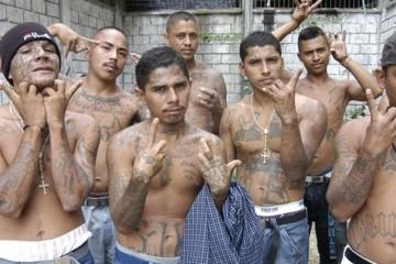 gang of thugs